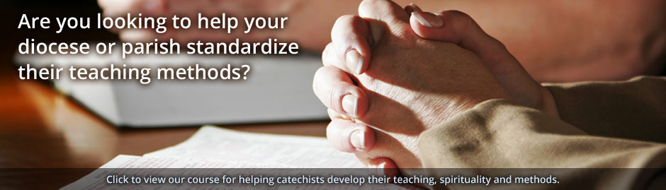 Are you looking for a program to help your diocese or parish standardize their teaching methods?